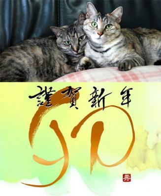 2012年用  猫 年賀状 WEB用のコピー