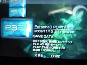 P1000257.jpg