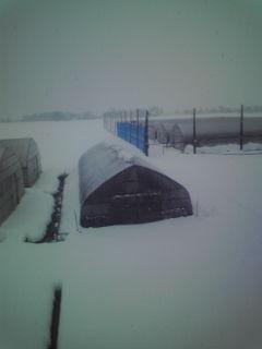 h21初雪2