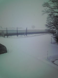 h21初雪1