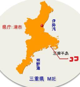 三重県の名張の海