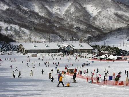 秋田無料スキー場