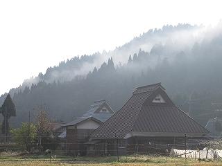 20091107生杉 053
