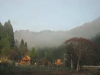 20091129生杉 007