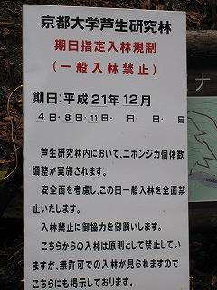 20091205-06生杉 011