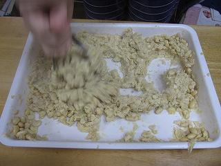 20100210-11味噌・生杉 006