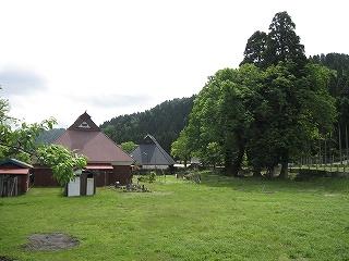 20100529-30生杉 061