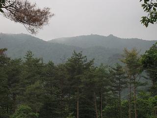 20100613蛇谷ケ峰 002