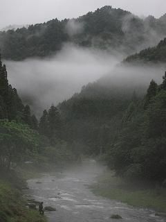 20100627生杉 003