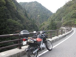 20101023生杉 002