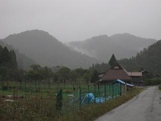 20101025生杉 015