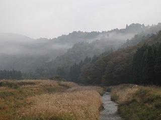 20101107生杉 005