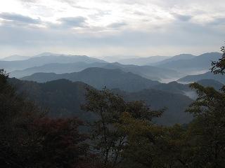 20101107生杉 009