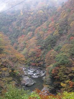 20101113,14生杉 002