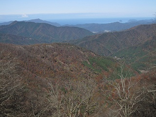 20101119-21生杉 042