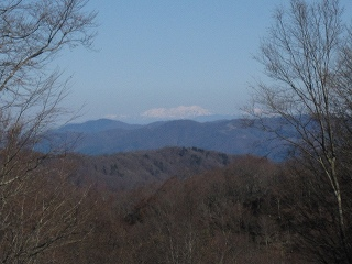 20101119-21生杉 045