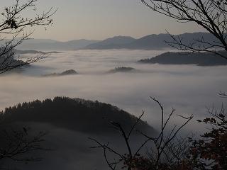 20101119-21生杉 089