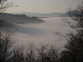 20101119-21生杉 090