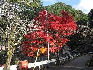 20101123熊野竹内氏展示会 046