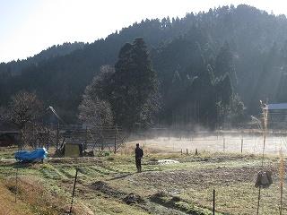 20101204-5生杉 022