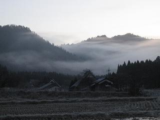 20101204-5生杉 014