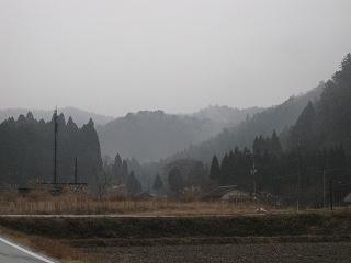 20101218生杉 001