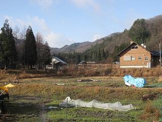 20101223生杉 001