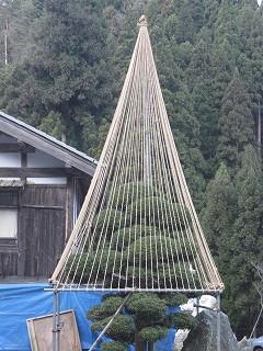 20101226生杉 001