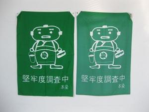 本染ボンネル緑4