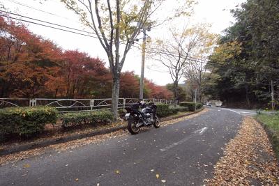 20091108_23.jpg