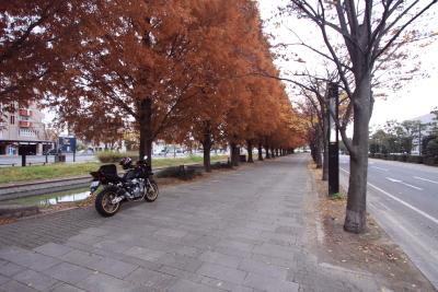 20091129_34.jpg