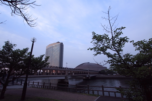 20100604_02.jpg