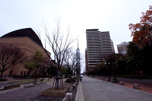 20101211_03.jpg