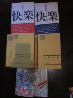 IMG_5230_convert_20110622214640.jpg