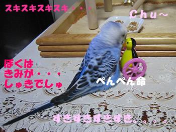 201103umia.jpg