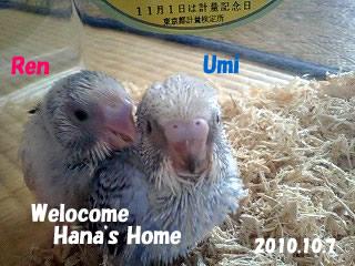 home01.jpg