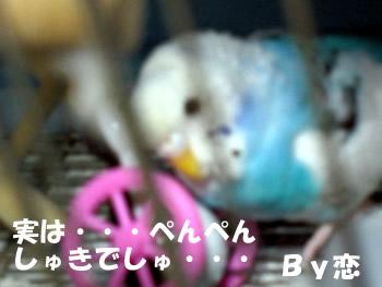 ren_pen.jpg