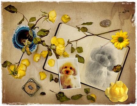 08027PhotoFaceFun5.jpg