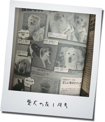 0128愛犬の友1月号