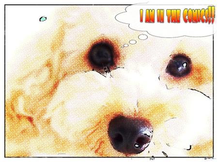 080250819りくコミック
