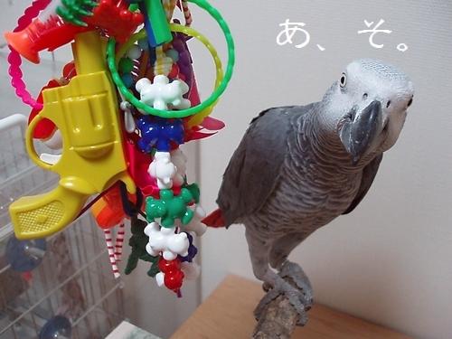 yomogi2009103102.jpg