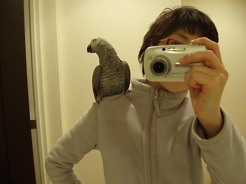 yomogi20091201000.jpg