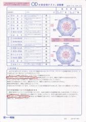 安全性テスト 1
