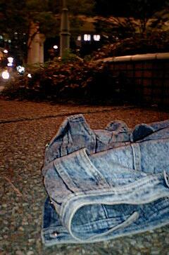 nightparkvest.jpg
