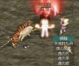 黄金の虎drop