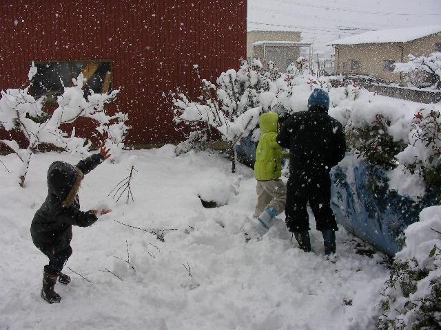 雪合戦20100101の1