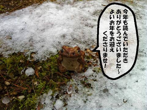カエルと雪