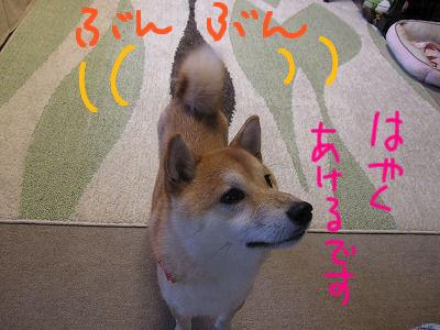 022_20091212121751.jpg