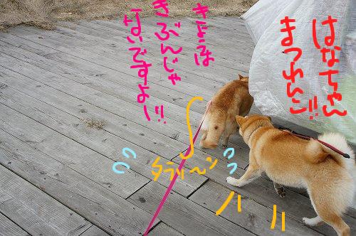 りんちゃんとつげき!!