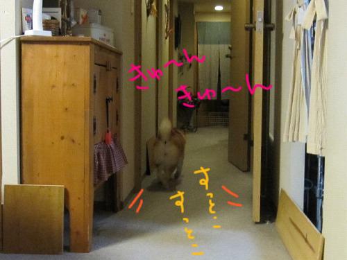 085_20100328195545.jpg